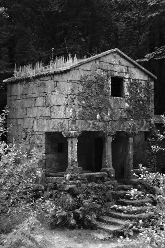 Vigo, Zamanes,  Galicia, España