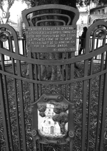 Olivo del Paseo de Alfonso con la verja y placa colocadas en 1932. Fotografía Eduardo Galovart